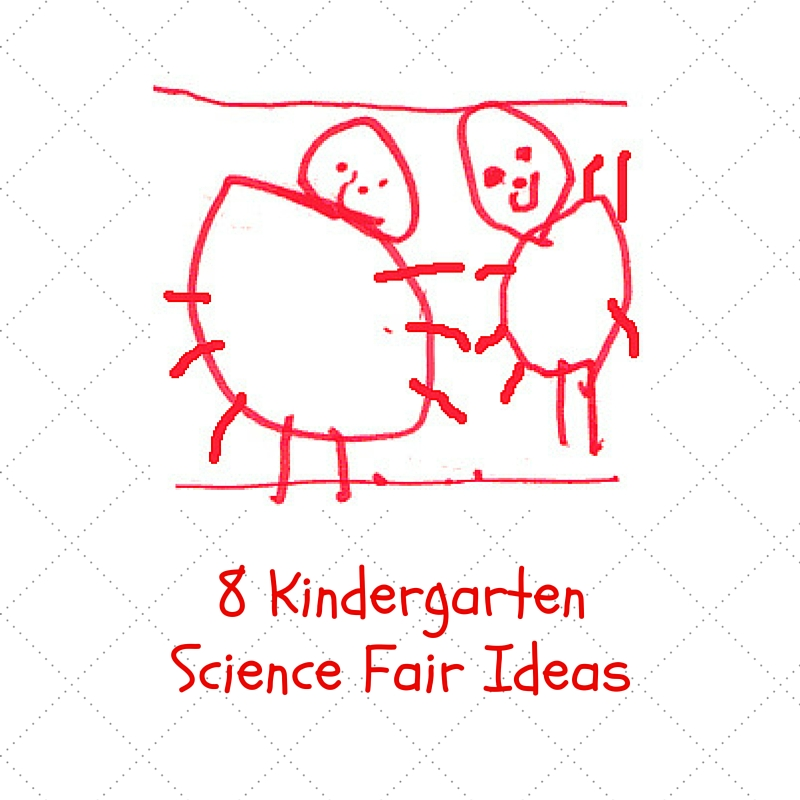 science fair projects for kindergarteners Enjoy seeing this fantastic special and very easy to understand elementary science experiments simple science for kids free science fair projects for 4th.